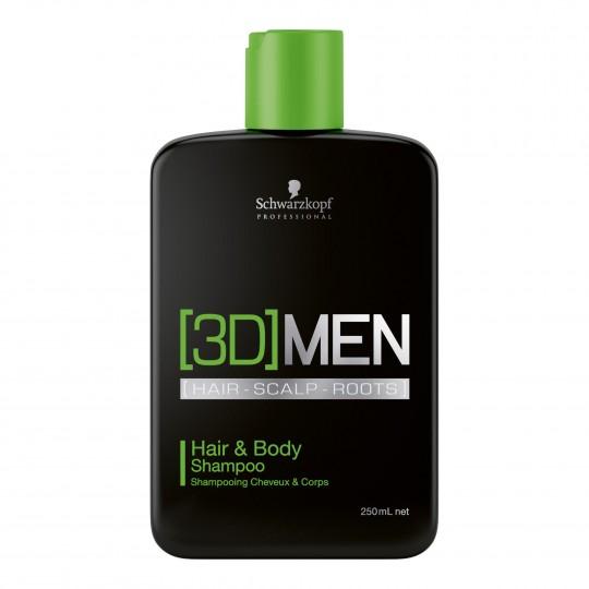 Hair & Body Shampoo 3D juuste ja keha šampoon meestele 250ml