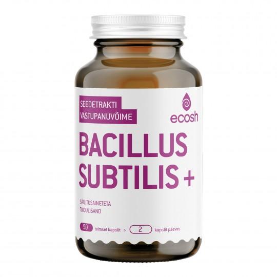 Bacillus Subtilis Plus toidulisand 90 kapslit