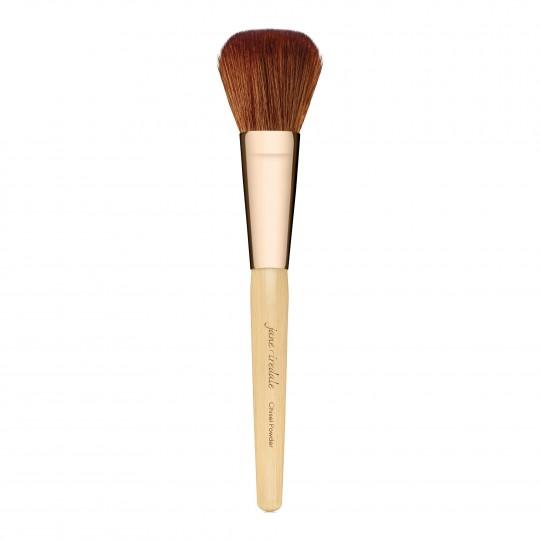 Chisel Brush tolmpuudri pintsel 1tk