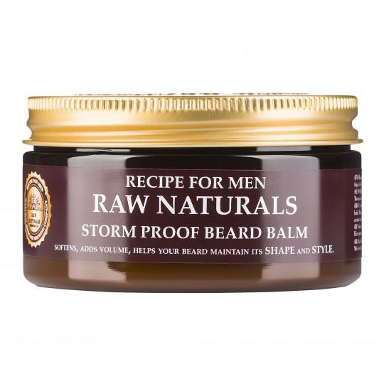 Raw Naturals hooldav viimistluspalsam habemele 100ml